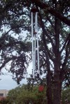 Wind chimes in the trees