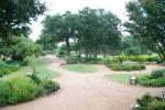 A rain-soaked garden is a happy garden!
