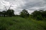 landpics_16