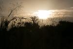 sunrise0917_7