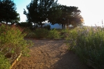 sunsetforblog1371