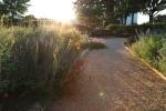 sunsetforblog1415