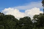 cloudsaug29_1