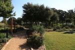 garden1021_60