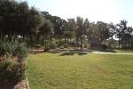 garden1021_61