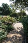 garden1021_69