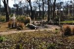 garden1229_1