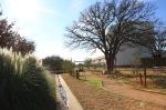garden1229_6