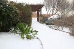 snow0227_10