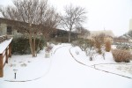 snow0227_3