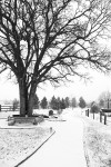 snow0227_36