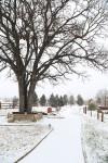 snow0227_37