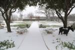 snow0227_40