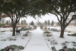 snow0227_42