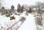 snow0227_43