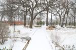 snow0227_44