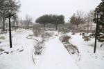 snow0227_58