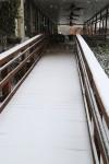 snow0227_6