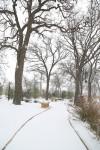 snow0227_60