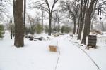 snow0227_61