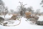 snow0227_70