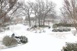 snow0227_80