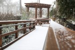 snow0227_81
