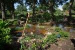 garden0527_7