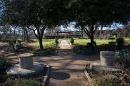 garden012615_23
