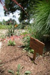 garden051616_41