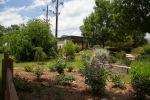 garden051616_49