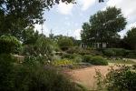 garden051616_53