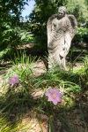 garden060616_13
