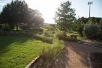 garden070816_18