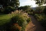 garden070816_22