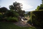 garden070816_6
