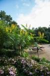garden092316_4