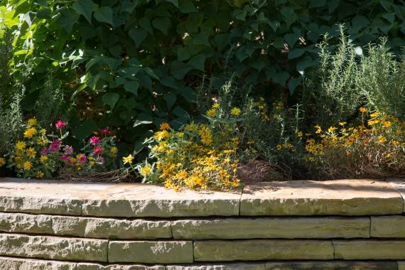 garden111816