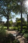 garden111816_12