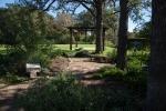 garden111816_13